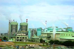 Perusahaan Kertas dan Bubur Kertas terbesar di Indonesia.